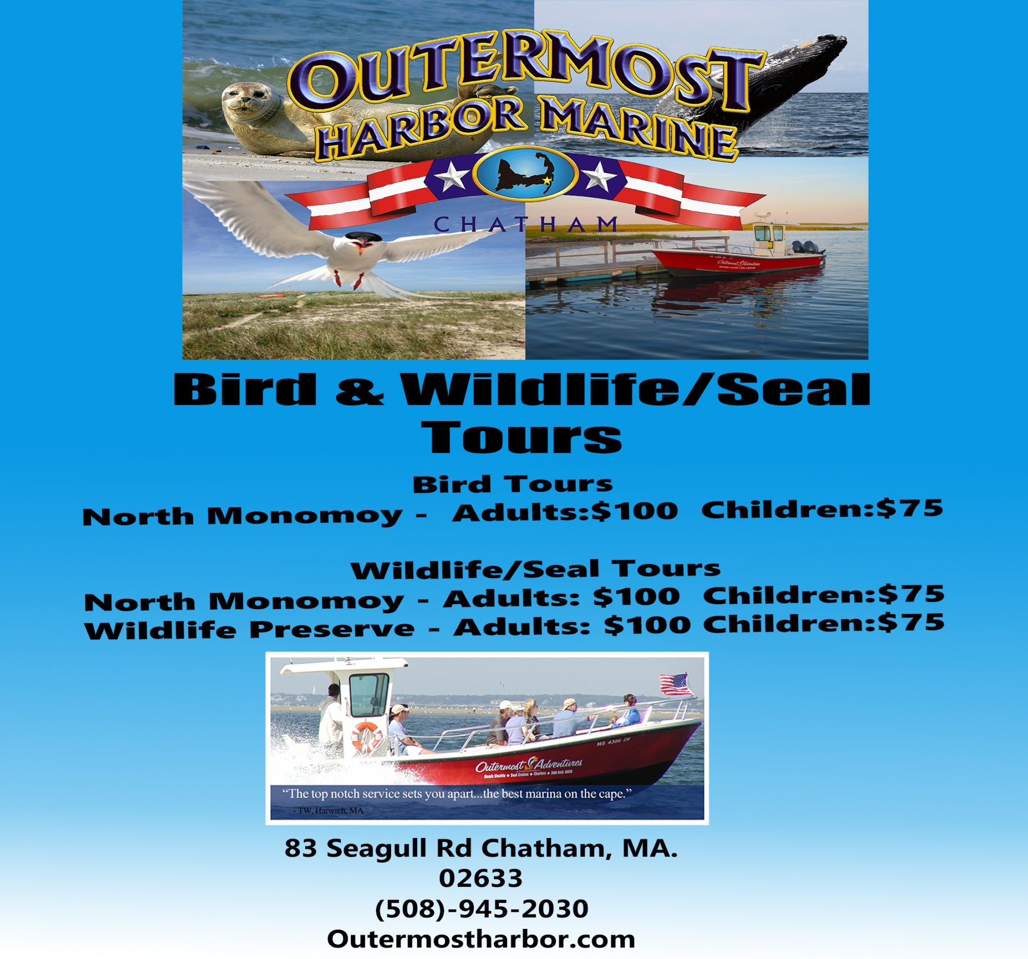 wildlife tours cape cod
