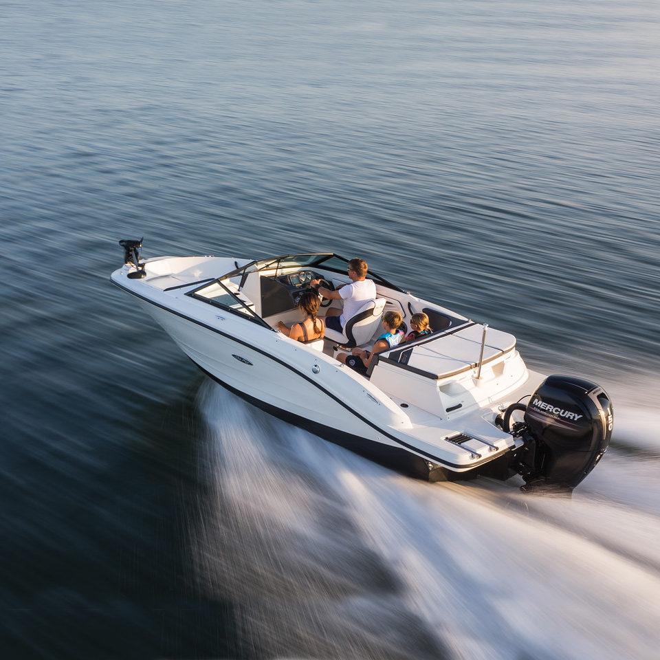 Sea Ray SPX 190 OB
