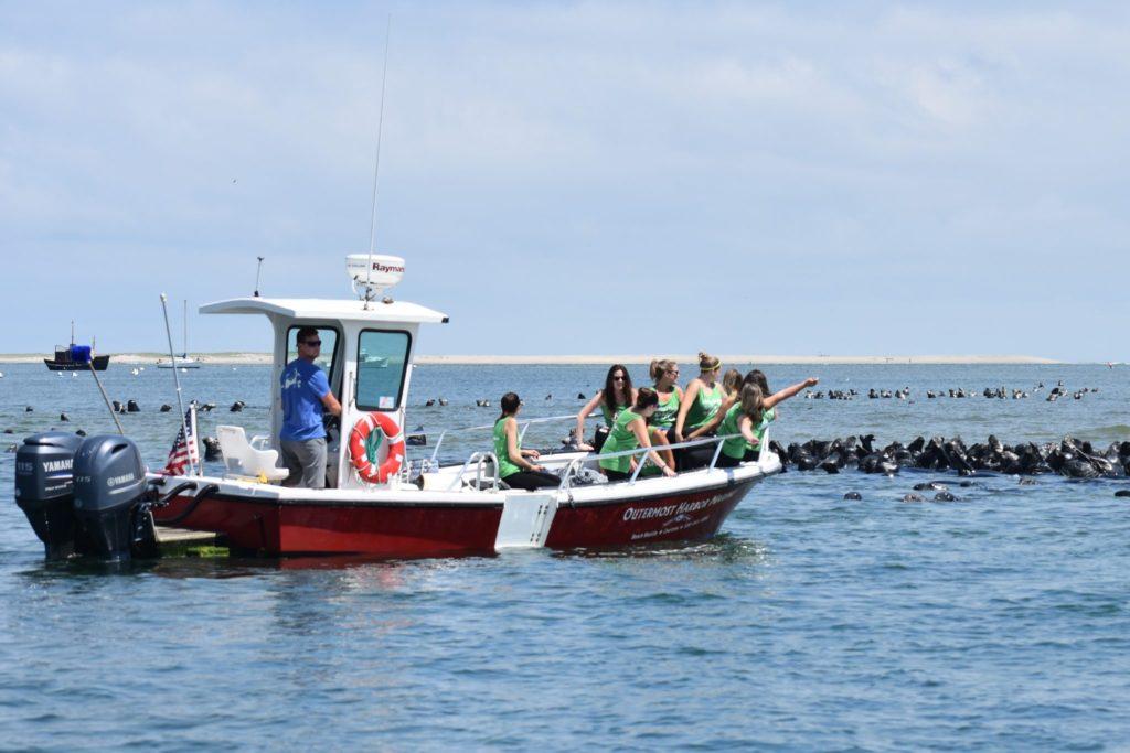 Boat service